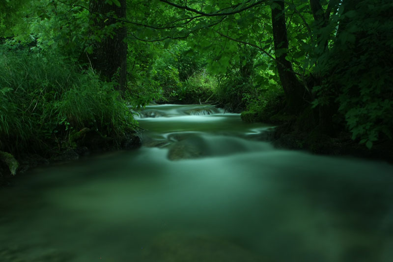 Blurred water movement on a forest creek